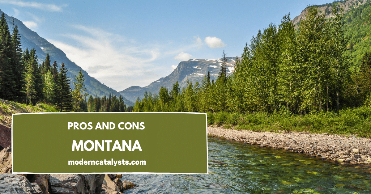 pros and cons Montana